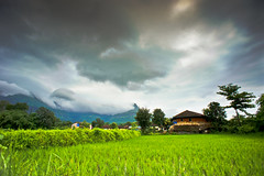 A Typical Monsoon Day (brainfunked) Tags: mountains clouds village farm country monsoon maharashtra ricefield cloudscape