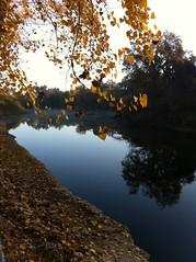 Fall_Talkoot_115