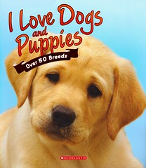 I Love Dogs and Puppies (Vernon Barford School Library) Tags: new school dog pets love dogs animals puppy reading book high puppies library libraries reads books read paperback photographs cover junior covers bookcover middle vernon recent bookcovers nonfiction paperbacks barford softcover dogbreeds vernonbarford softcovers 9780545584425 9781781715420