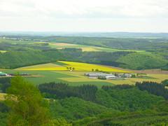 Blick von der Mosenberg-Htte (Jrg Paul Kaspari) Tags: spring die eifel ausblick frhling 2016 vulkaneifel manderscheid mosenberg bergkraterseetour mosenberghtte