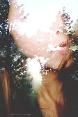 reminiscencia (Conserva tus Colores) Tags: chile morning portrait woman naturaleza art luz me nature girl rboles doubleexposure autoretrato paz rbol silencio encuentro naturelovers dobleexposicin bsqueda reminiscencia conservatuscolores