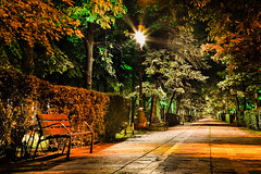 Bucureti (JoHeyFotografie) Tags: park trees night nacht romania laterne bume allee nachtfotografie radweg parkbank leere hecke klassizismus sozialistischer bucureti fusweg