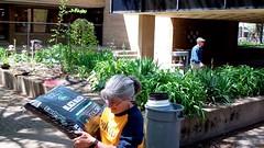 Hauling (Western Cuyahoga Audubon) Tags: youth conservation habitat beautification mentoring volunteerism environmentalconservation birdfriendly schoolprograms collaborativeleadership clevelandmunicipalschools waltonschool westerncuyahogaaudubon