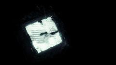 (Massimo Accarino) Tags: pictures street light urban blackandwhite bw white black monochrome dark lumix photography streetphotography scene explore negative streetphoto tones monocrome feat panasoniclumix gx1