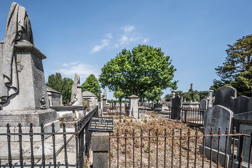 MOUNT JEROME CEMETERY AND CREMATORIUM IN HAROLD'S CROSS [SONY A7RM2 WITH VOIGTLANDER 15mm LENS]-117087