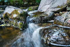 Fairy Glenn (Ryan Dineen) Tags: fish green water river flow moss movement rocks slow smooth shutter silky kilbroney