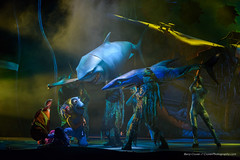 Finding Nemo Musical (Barry Cruver) Tags: nemo musical disneyworld sharks dory animalkingdom findingnemo waltdisney