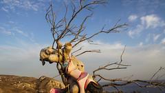 89-Santorin_Akrotiri Vounia (maxie.anerev) Tags: santorin akrotiri griechenland insel kste ufer stofftier kunst deviant art skulptur baum sand