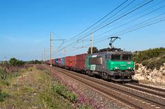 BB 22275 SNCF (Enrico Bavestrello) Tags: railroad france train nikon railway zug trains freighttrains fret francia treno trainspotting sncf freighttrain ferrovia treni gterzug ferrovie bb22200 saintchamas nikond5000 bb22200sncf bb22275