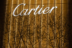 West Nanjing Road (pruse) Tags: china city light urban color colour tree lines silhouette night dark advertising branch shanghai shapes cartier signage brand constrast westnanjingroad