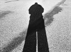 in the photographer's shadow (Mister.Marken) Tags: shadow kodaktrix400 mamiyam645 m645