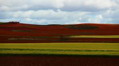 Brodats (lluiscn) Tags: red brown verde green landscape rojo cel paisaje land fields vermell terra camps campos verd tierra castilla mancha paisatge nvols castella nvol manxa roig marr ennuvolat nuvolat