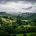 Tuscany landscape - Siena, Italy - Landscape photography