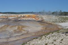 Giantess geyser runoff, Yellowstone (David A's Photos) Tags: yellowstonenationalpark yellowstone geyser giantess runoff yellowstonetrip june2016