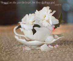 Pure in Heart (lilhouseonthehill) Tags: leica white cup 50mm nicole petals beige soft heart tea matthew pastel cream honest m8 bible bone lonely camellia sasanqua delicate pure chine shabby kanofski
