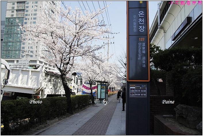 釜山溫泉站 (2).JPG