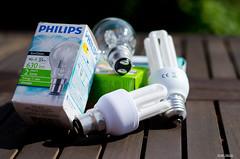 Energy Saving Change (BGDL) Tags: green garden table lightbulbs environmental packaging change niftyfifty nikond7000 ourdailychallenge elementsorganizer