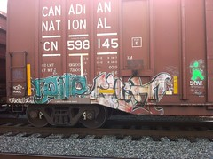 Frite and Guilt (Dixie Destruction) Tags: sc graffiti south e carolina boxcar freight guilt phrite