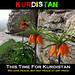 (Siroshtî Kurdistan)
