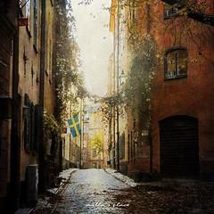 Cobblestone Alley (Milla's Place) Tags: door city tree window thanks buildings alley sweden stockholm streetscene cobblestone textures gamlastan lantern oldtown textured tatot distressedjewell kerstinfrankart