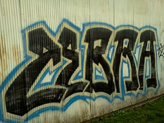 Zebra (Iksuhdundidit) Tags: graffiti kentucky zebra louisville graff flickrandroidapp:filter=none