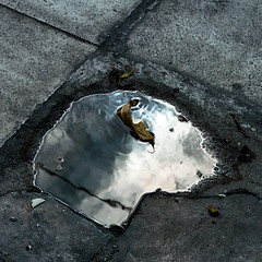 blue eye (Vasilis Amir) Tags: abstract reflection leave water square puddle mud teal  mygearandme mygearandmepremium mygearandmebronze vasilisamir