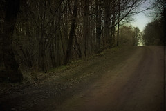 dirt road (Ralpheyesee) Tags: landscape dirtroad inshadow lightattheend
