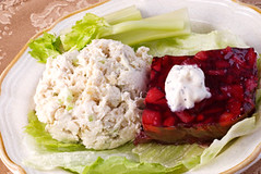 Chicken Salad and Cranberry Salad (fatimasounder) Tags: light red food holiday cold chicken fruit lunch cuisine salad healthy tasty plate fresh dressing seeds delicious cranberry health homemade poultry brunch diet dairy celery poppyseed gel topping chilled congealed gelatin