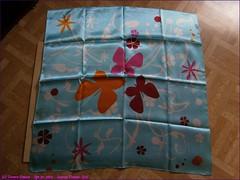294TC_Scarves_Dreams_(32)_Apr01,2014_2560x1920_4010025_sizedflickR (terence14141414) Tags: scarf silk dreams gag foulard soie gagging esarp scarvesdreams