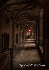 The Shining (stephentucker558) Tags: dark vampire sinister horror ghostly