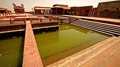 Fatehpur Sikri Palace 118 (David OMalley) Tags: india muslim islam agra palace mosque pilgrimage akbar masjid allah islamic pradesh fatehpur sikri muhammed uttar jama darwaza buland sikari vijaypur