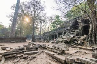 angkor - cambodge 2016 96