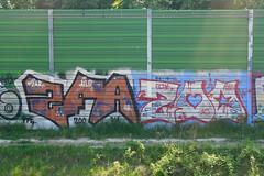 ZFA ZOO (022_graff) Tags: zoo graffiti pier scat line vandalism warsaw styles graff pm bombing warszawa wwa ppe skat trainline 2016 tzar ailo rakowiec zfa ekrany pkprakowiec 022graff