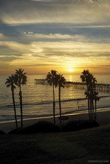 Another day.... (Joe Hengel) Tags: ocean california ca blue sunset sea orange seascape yellow clouds golden evening pier seaside waves glow outdoor hill palm palmtrees pacificocean socal palmtree southerncalifornia orangecounty hillside oc sanclemente seashore goldenhour eveninglight goldenstate sanclementepier eveningskies cloudsbluesky cloudsstormssunsetssunrises cloudsorangecounty