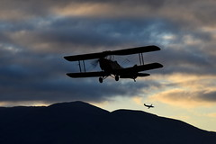 Tiger Moth sunrise (GJC1) Tags: morning misty dawn g wanaka warbird airdisplay warbirdsoverwanaka gjc1 wanakaairport geoffcollins