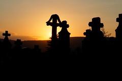 napszllta / eventide (debreczeniemoke) Tags: sunset summer cemetery evening cross sundown este naplemente nyr eventide napnyugta temet kereszt kszonaltz napszllta napszentlet olympusem5 plieiidejos