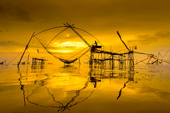 Activities of the people flattering fish (keangs) Tags: ocean life wood travel shadow sea cloud fish reflection water beautiful sunrise work thailand golden fisherman nikon asia lifestyle massive songkhla job activities formed flattering phatthalung siluate