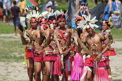 PNG traditional dancers (KENO Photography) Tags: new people woman man men grass festival horizontal island photography islands guinea dance women dancers dancing pacific ceremony dancer skirt tribal celebration teenager png perform tradition tribe custom archival papua ethnic groupofpeople anthropology grassskirt teenagegirls enthnography teenagersonly colourimage indigenousculture trobriand celebratoryevent