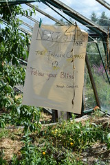 Textile display in glasshouse (Permaculture Association) Tags: wales gathering ecovillage permaculture 2016 lammas cyrmu paramaethu