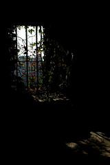 In the darkest night, at the brightest day (Isengardt) Tags: morning flowers light shadow castle window dark licht early stuttgart fenster blumen fenced morgen schatten dunkel burg esslingen morningsun morgens frh vergittert regionstuttgart