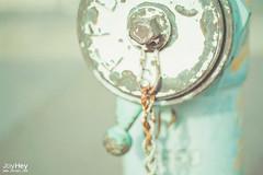 Candy Hydrant (JoyHey) Tags: blue color cute green art hydrant vintage happy photography soft bright sweet pastel joy dream mint retro joyhey