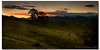 Finish every day and be done with it! (danishpm) Tags: trees sunset mountains grass canon evening australia wideangle nsw aus 1020mm manfrotto daysend sigmalens northernnsw eos450d 450d sorenmartensen hitechgradfilters 09ndreversegradfilter 06ndsoftgradfilter murwilllumbah