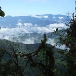 """BIO 245: Ecology of Ecuador<a href=""""http://farm8.static.flickr.com/7243/6996071134_7d8645ec52_o.jpg"""" title=""""High res"""">∝</a>"""