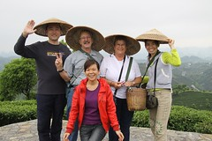 Tea pickers (Purple Giraffe) Tags: china green tea yangshuo picking teaplantation teapicking