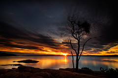 Before the Fire (< Nick Friend >) Tags: sunset sky tree water clouds nationalpark rocks australia tasmania sillhouette freycinet honeymoonbay