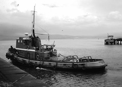 Flying ? - A Greenock tug (Fred J Carss) Tags: port docks greenock flying ships 1968 tug