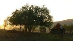 Namibia (tor-falke) Tags: africa people landscape african culture safari human tribes blackpeople afrika e