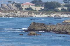 Monterey Bay (Niki Gunn) Tags: california ca monterey pentax may montereybay 2012 k5 loverspointbeach 80320mm fa80320mm smcpentaxfa80320mmf4556 fa803204556