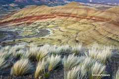 Painted Hills Unit (Sonya Lang Photography) Tags: color oregon pattern desert paintedhills johndayfossilbeds