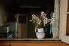 Ceramic Vase (Scorchez) Tags: foolsparadise dorismccarthy artist canadian landscape painter scarborough ontario canada toronto scarboroughbluffs tamron1750mmf28 doorsopen bestofthebest keeper